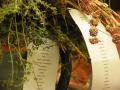 Wild Plants, Museo Marino Marini, Florenze